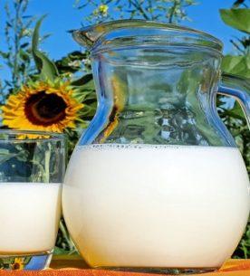 La dieta del latte di riso