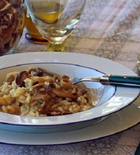 Risotto ai funghi porcini-sagra del risotto a Legnano
