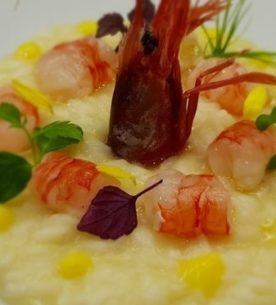 Contest risotto-Arte&Cucina