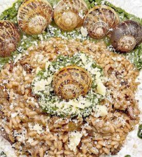 Risotto con helix aspersa (lumache), aglio nero igp di Voghera, cicorietta di campo, toma di malga piemontese e Castelmagno