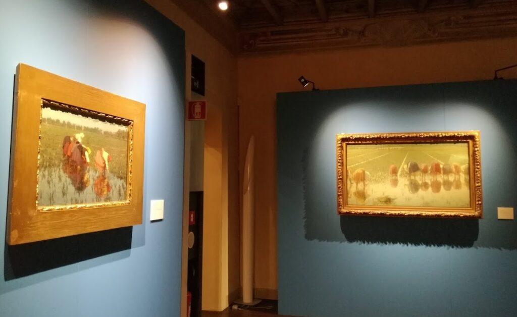 """L'allestimento della mostra """"Vita in risaia"""" alla Galleria Giannoni di Novara"""
