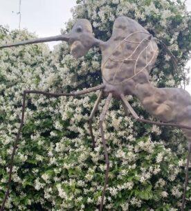 La zanzara di Giovanni Tamburelli a Casalbeltrame