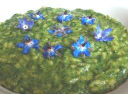 Il risotto alla borragine di primavera